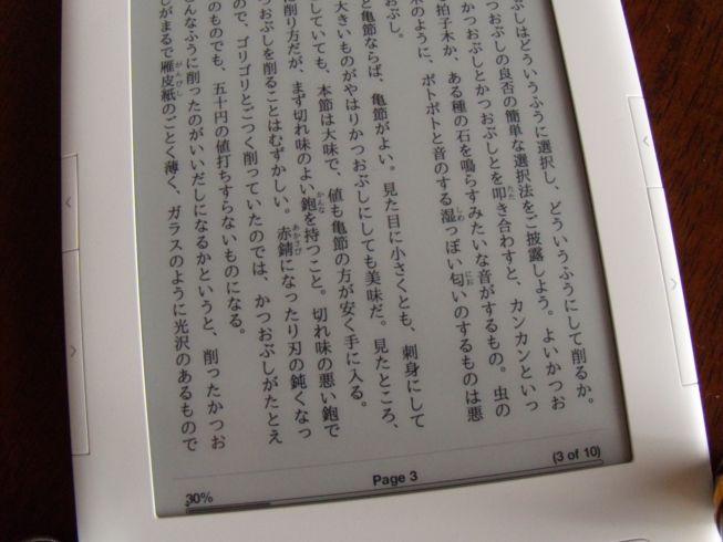 DSCN1167_R.JPG